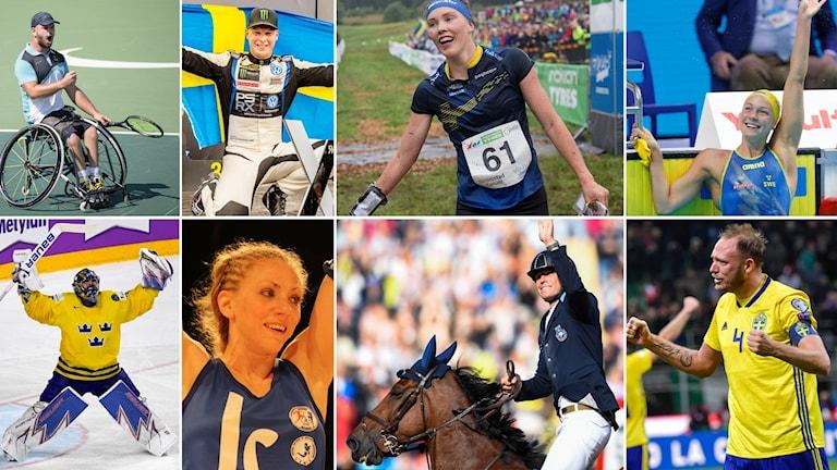 Stefan Olsson, Tre Kronor, Johan Kristoffersson, Sofia Olofsson, Tove Alexandersson, Peder Fredricson, Sarah Sjöström och herrlandslaget i fotboll återstår i kampen om Jerringpriset.