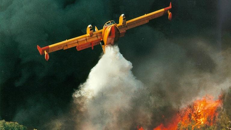 Franskt vattenbombningsplan. Foto: Bombardier