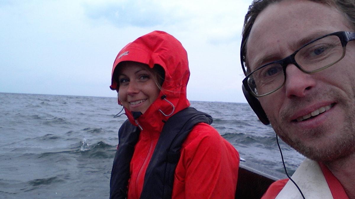 Vår reporter Björn Gunér spanar efter tumlare vid Kullaberg i Skåne tillsammans med tumlarforskaren Johanna Stedt