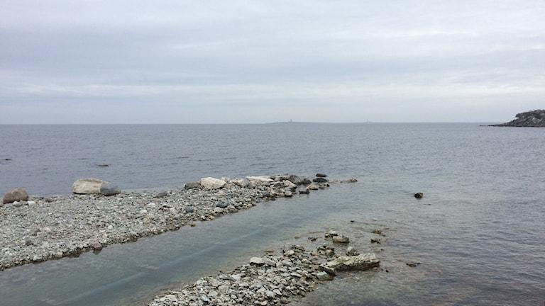 Här vid Herrvik på östra Gotland tas vatten in till en avsaltningsanläggning som ska stå klar i sommar.