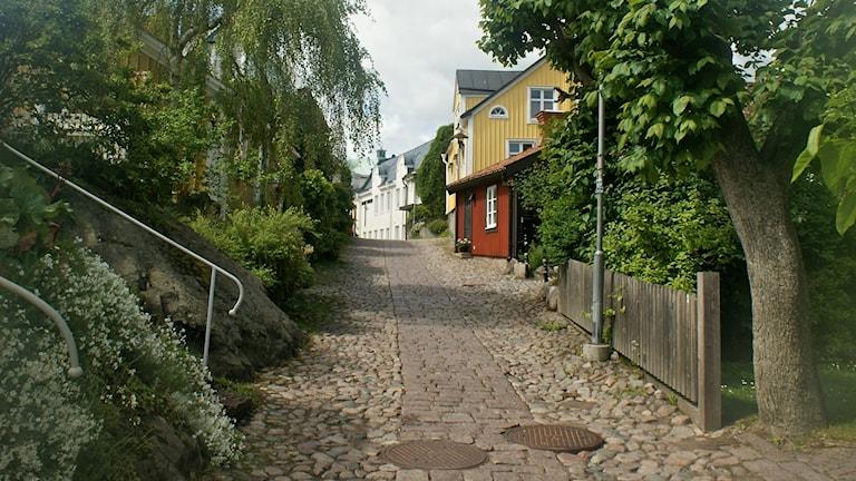 En smal kullerstensgata i Oskarshamn, kantad av träd på bägge sidor och med trähus längs gatan, ett rött, ett gult och ett vitt hus.