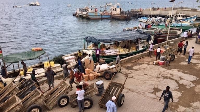 En hamn med mindre fiskebåtar vid Kenyas kust