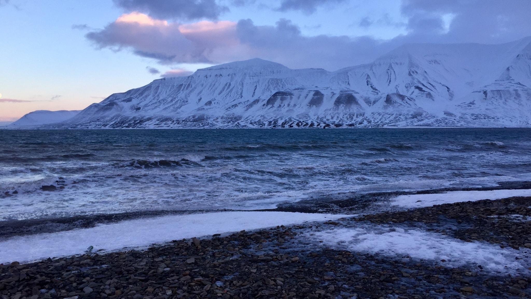 Ett snötäckt fjäll syns bakom en isfri fjord.