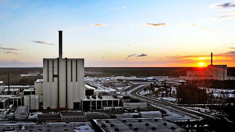 Två kärnkraftsreaktorer i Forsmark i solnedgång.