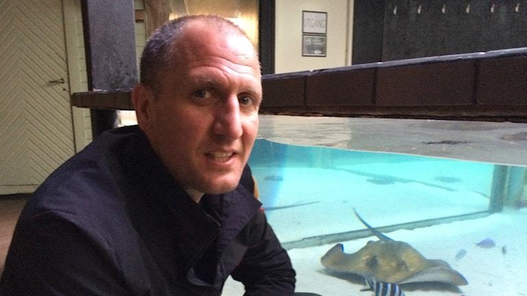 Paul Cox på Shark trust besökte Sverige för att informera om hajar och rockors situation.