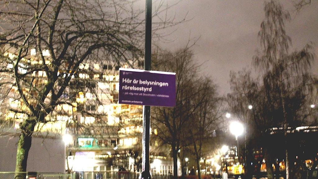 Längs Kungsholmsstrand i centrala Stockholm kan lyktstolparna variera sin ljusstyrka beroende på hur många som trafikerar gång- och cykelvägen.