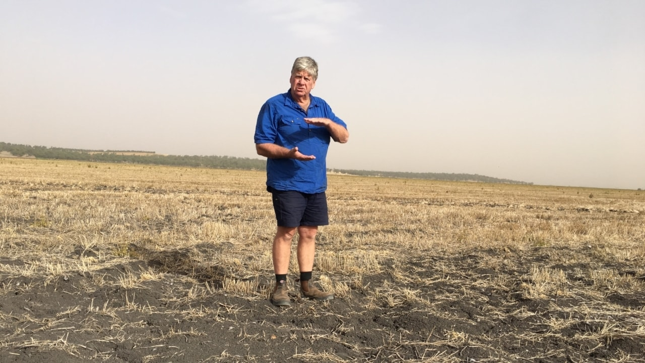 Psykiskt svårt för bönder i torkans spår