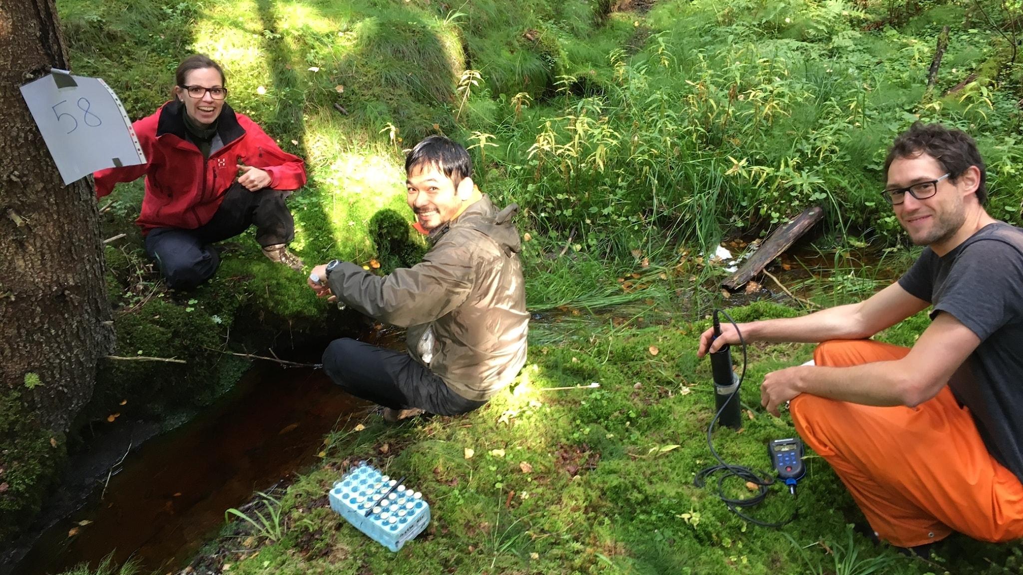 En kvinnlig och två manliga forskare sitter i grönskan vid en bäck och håller i mätinstrumetn
