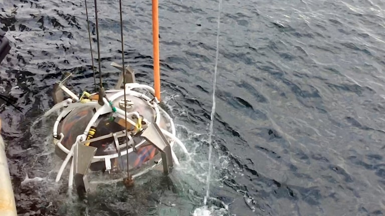 En dykarklocka med dykare i sänks ner i vattnet.