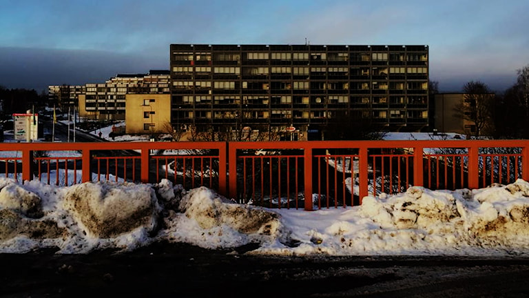 Bildtext: I stadsdelen Gårdsten i Göteborg har de kriminella grupperingarna starkt fäste. Foto: Foto: Karwan Faraj/Sveriges Radio.