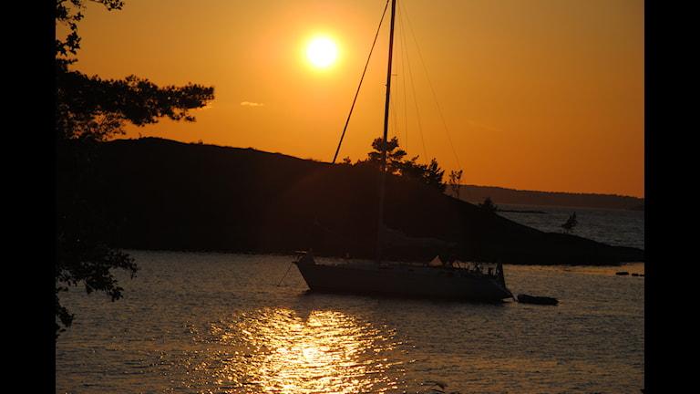 Båt i kvällssol. Foto: Susanne Ljungö
