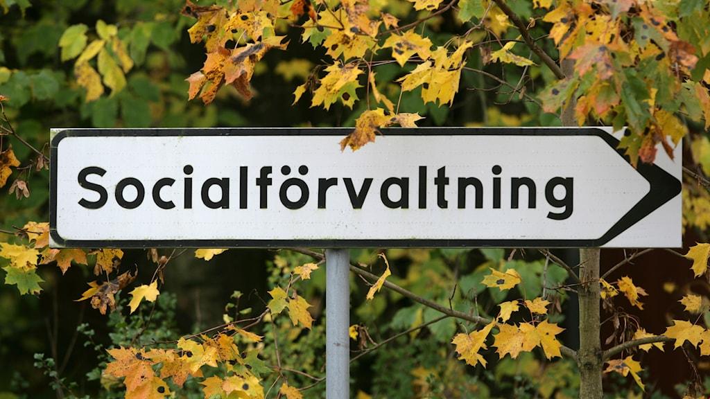 """Skylt med texten """"Socialförvaltning""""."""