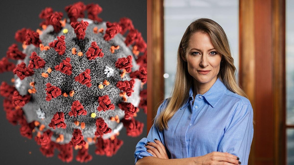 Ekonomiekot om AI och Coronaviruset