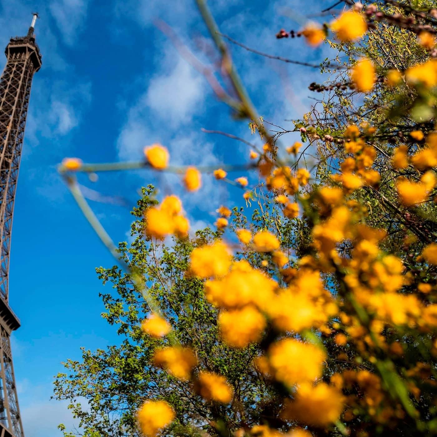 """""""Sopsortera i decennier för en resa till Paris"""""""