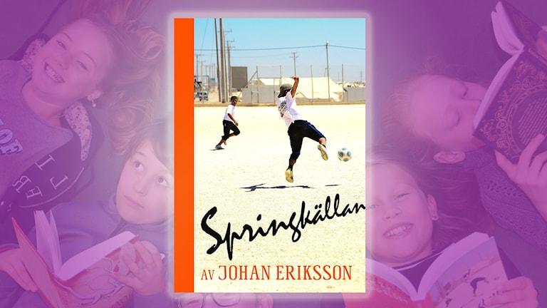 Bok 2: Springkällan av Johan Eriksson.