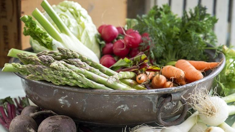 Primörer. Morötter, rädisor och grön sparris. Foto: Leif R Jansson / TT