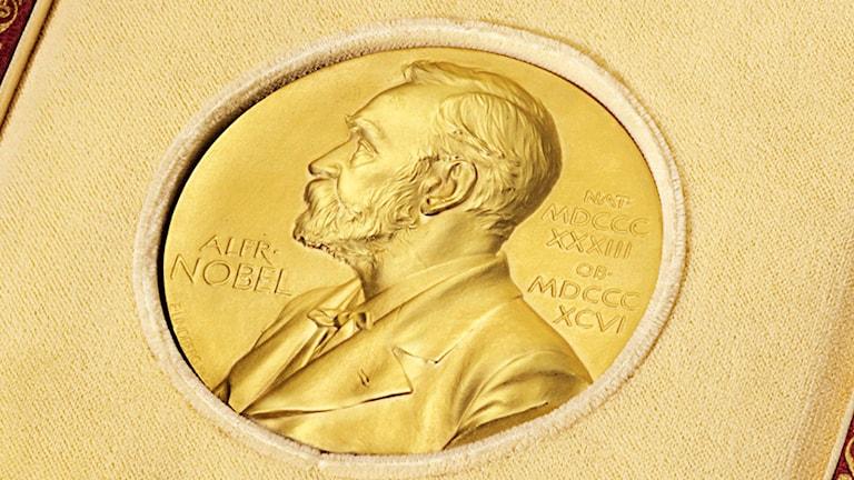 Nobelpriset. Foto: AP Photo/Christie's/TT