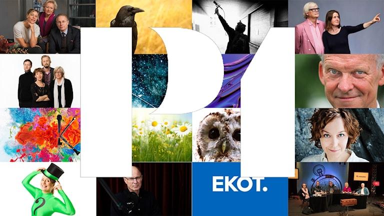 Kollage av 16 programbilder från P1 2018