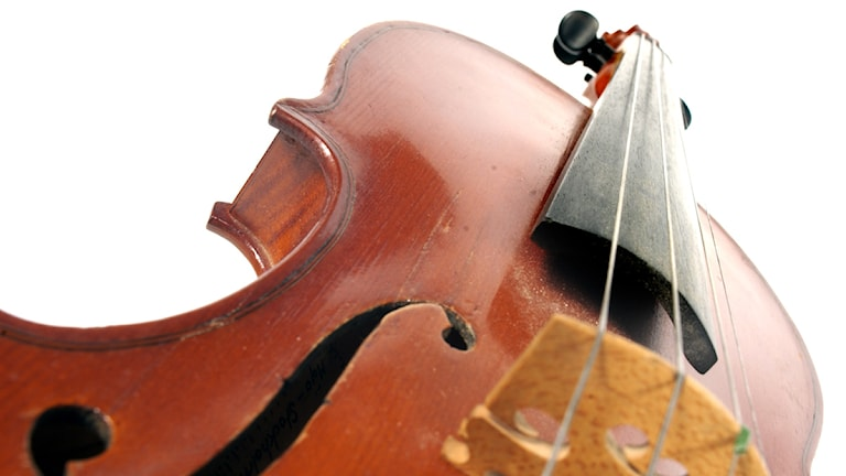 Fiol, violin. Foto: SVT Bild