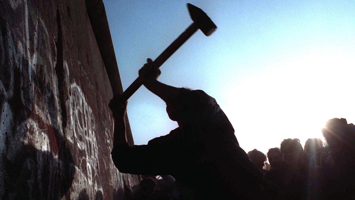 Man slår med slägga på Berlinmuren, november 1989. Foto: John Gaps III/AP/TT Nyhetsbyrå.