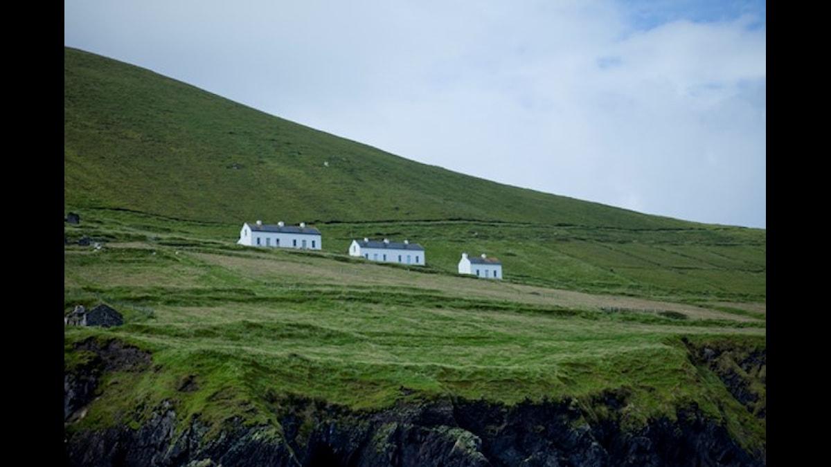 Irlannissa vietettävä maan kansallispäivä on yleinen juhlinnan aihe muuallakin maailmassa.