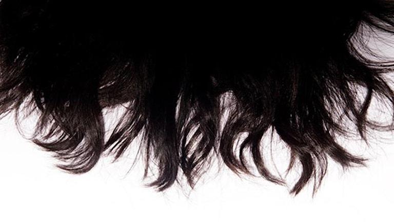 Svart hår. Foto: SVD/TT