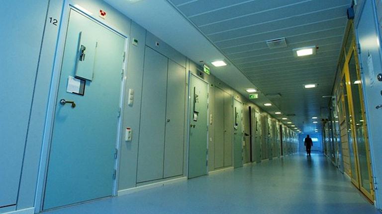 Korridor i häkte (Foto: Björn Larsson Ask/TT)