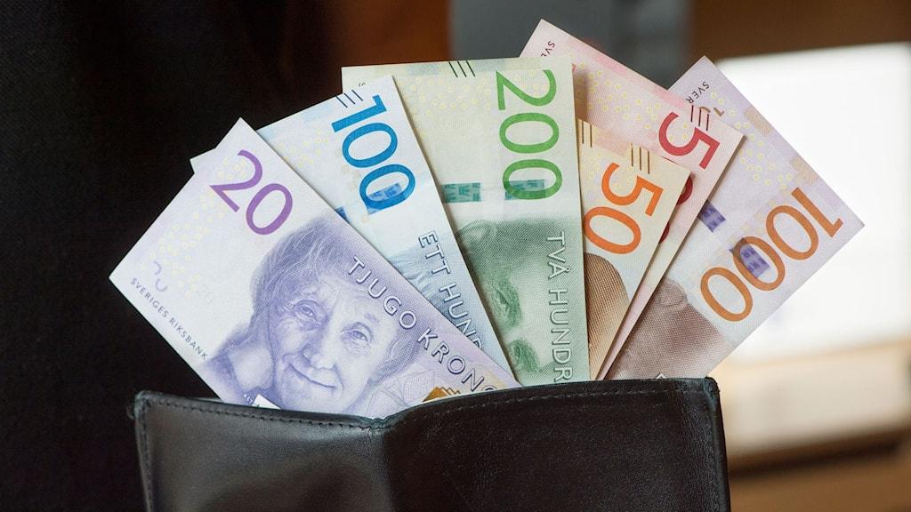 Sveriges nya sedlar. Foto: Fredrik Sandberg/TT