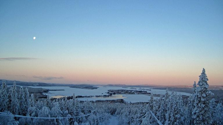 Snö och kyla. Foto: SVT Bild