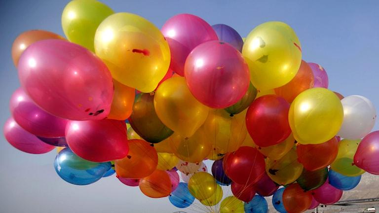 Ballonger. Foto: MUHAMMED MUHEISEN / TT