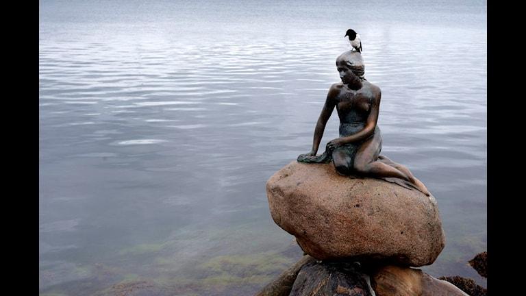 Den lille havfrue var usel underhållning, enligt Ekstrabladets panel. FOTO: SCANPIX