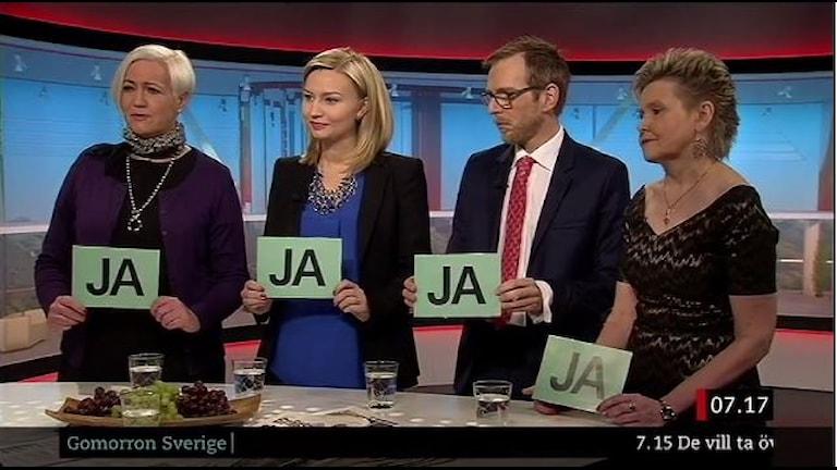 De fyra som vill bli ledare för Kristdemokraterna.