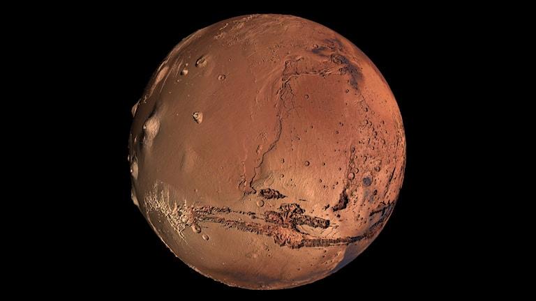 People on Mars. Snart i en ruta nära dig. Foto: Kevin Gill/Flickr/CC BY 2.0