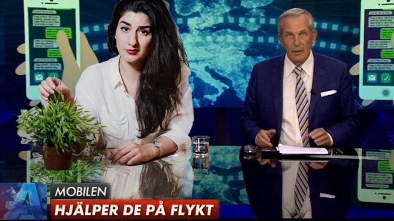Foto: SVT / Sveriges Radio OBS Bilden är tyvärr ett montage