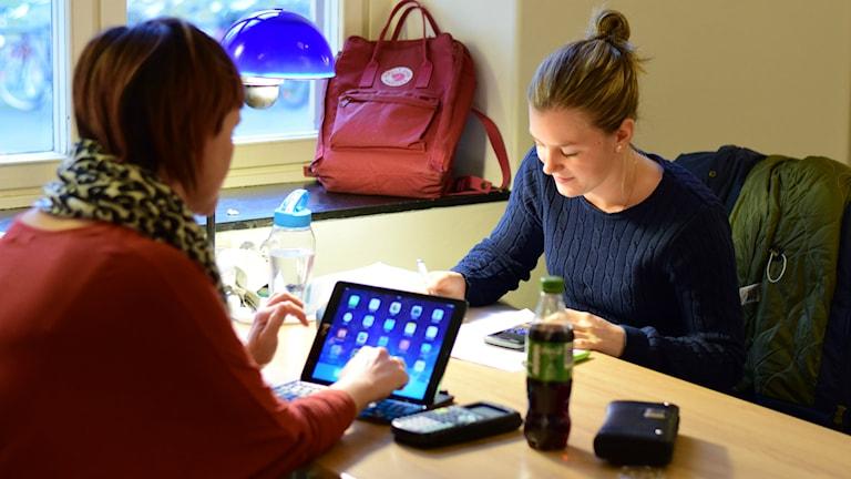 studenter studerar högskola lantmäteri Foto: Anna-Karin Lampou/Sveriges Radio