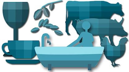 illustrationer över livsmedel och ett badkar. Grafik: Susanne Lindeborg/Sveriges Radio.