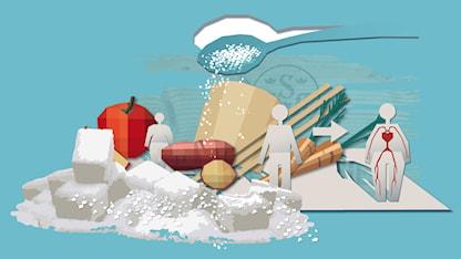 Illustration som visar sockerbitar och andra livsmedel. Illustration Susanne Lindeborg.