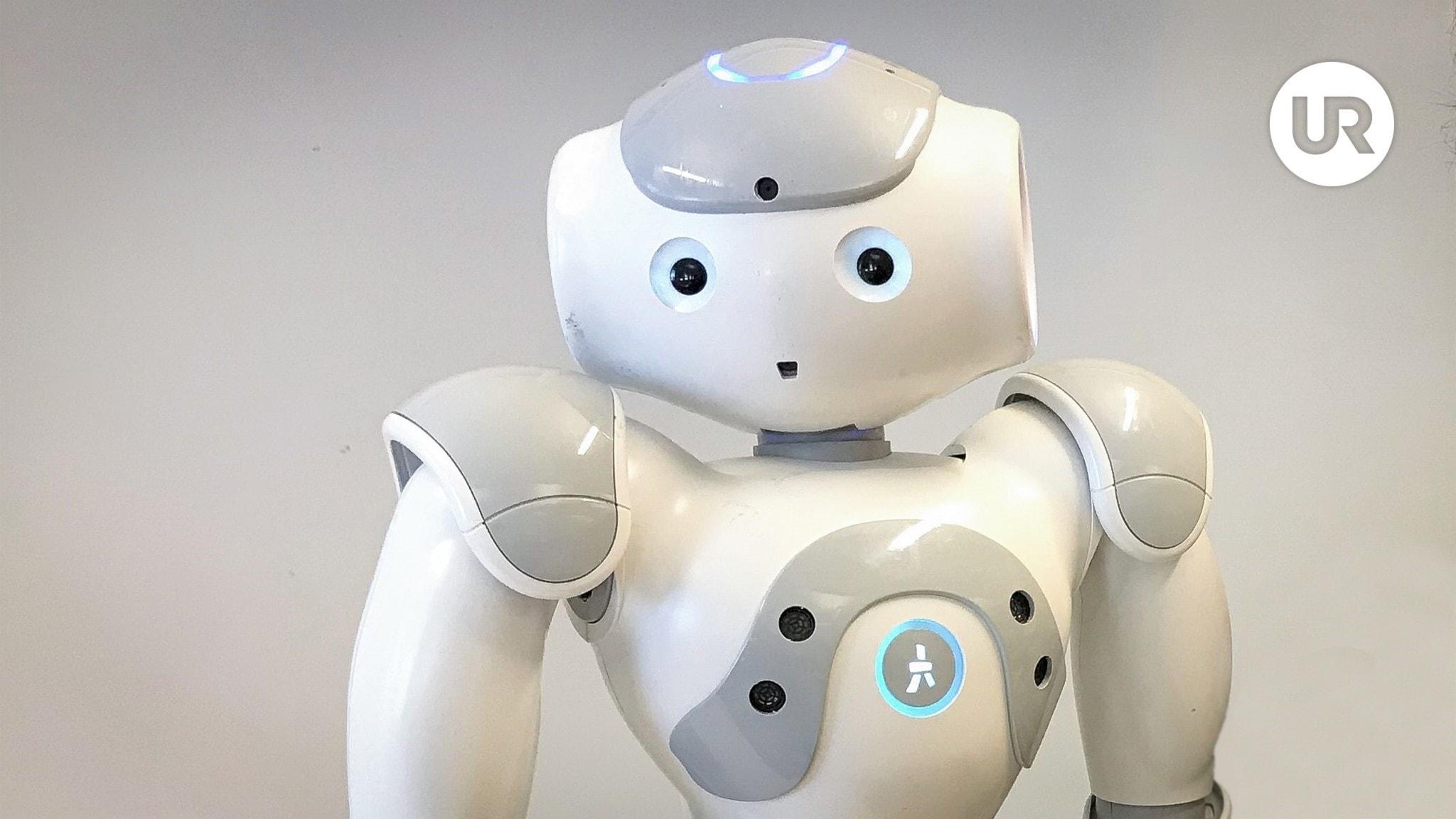Skolministeriet: Vad har robotar för plats i skolan?