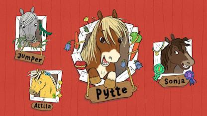Illustration av ponnyn Pytte med häst-kompisar