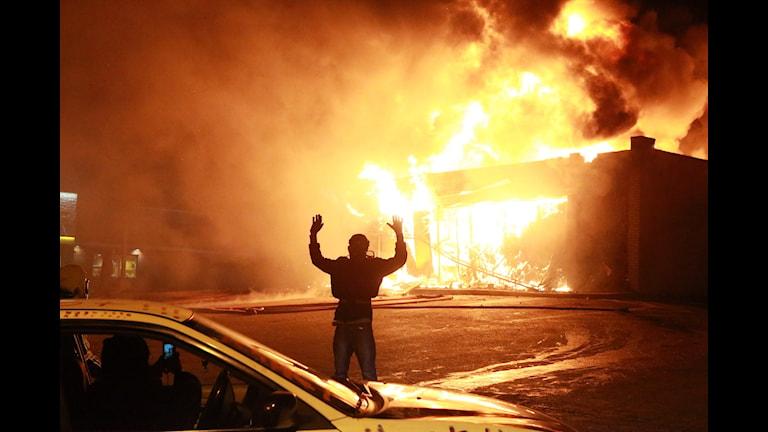 Demonstranten i Ferguson sträcker upp händerna för att visa sig obeväpnad, en symbol för protesterna mot att svarte tonåringen Michael Brown sköts ihjäl av polis. Foto: TT / Christian Gooden