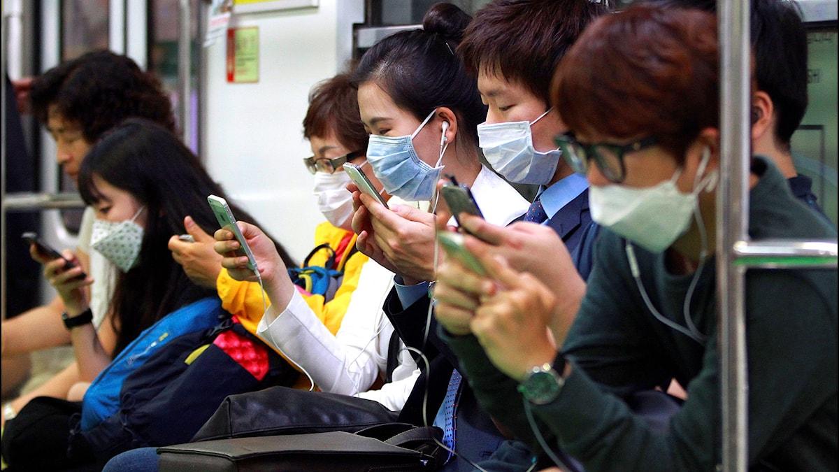 Sydkoreaner som använder munnskydd när de åker tunnelbana för att skydda sig mot mers-viruset