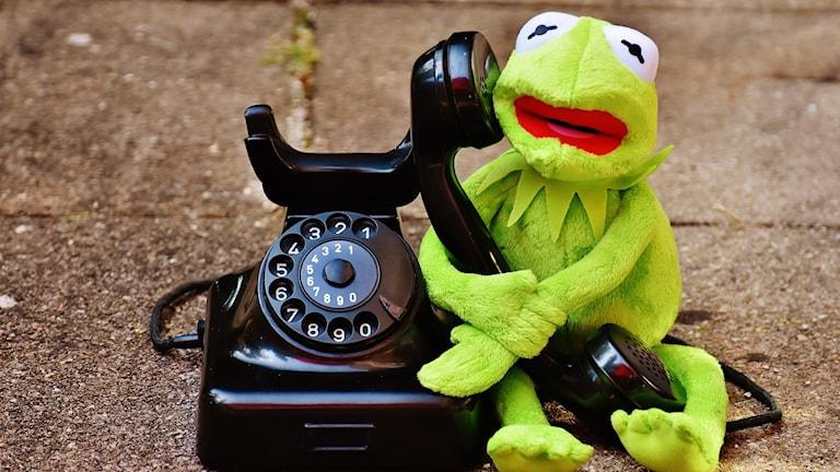Kermit pratar i telefon