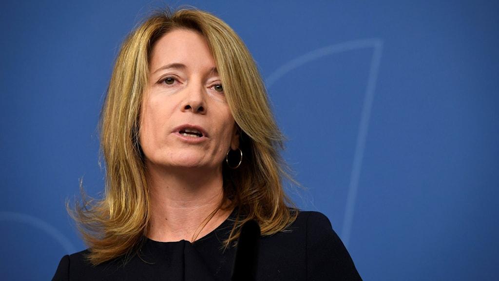 Anette Novak, särskild utredare för Medieutredningen