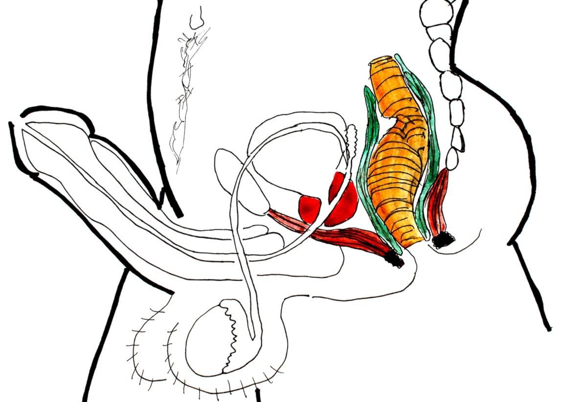 Hur man stretcha för analsex