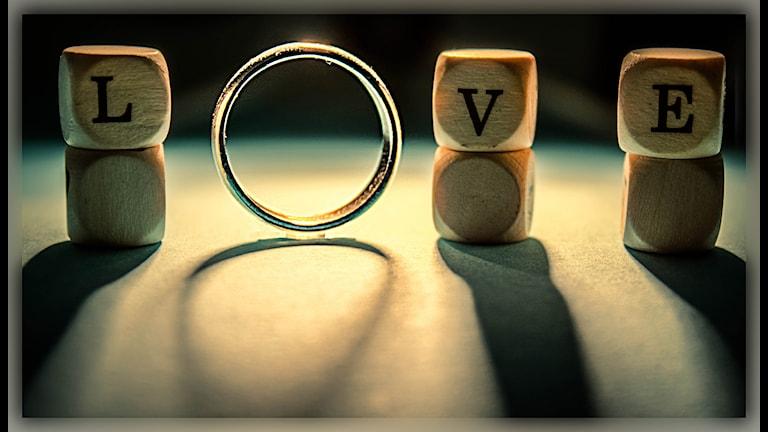 Kärlek vid första ögonkastet? Foto: Dennis Skley/Flickr/CC BY-ND 2.0