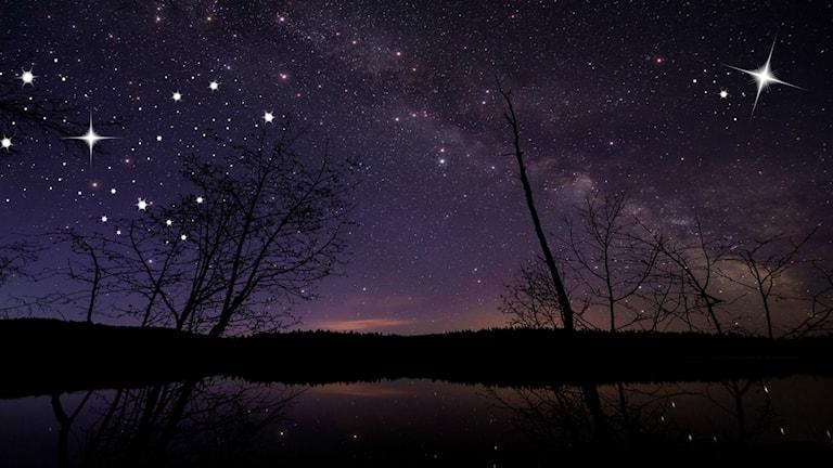 Stjärnor på himmel. Foto: `James Wheeler/Flickr (CC BY-NC-SA 2.0)