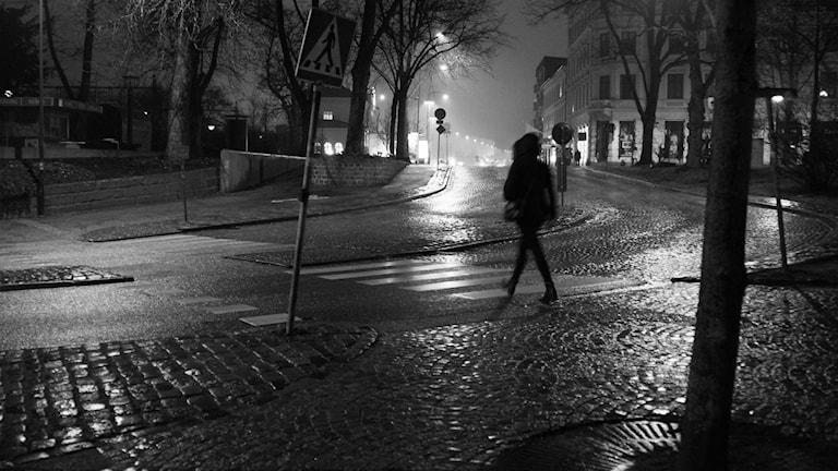 En riktigt regnig novemberdag i Lund. foto: Sigfrid Lundberg/Flickr/