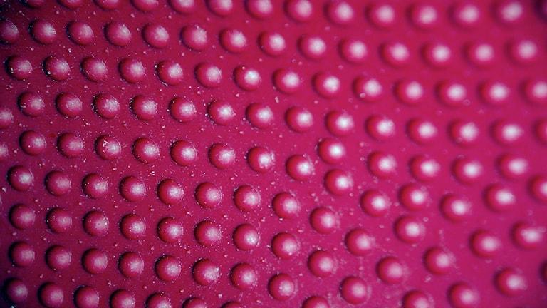 knottror Foto: karen2754/Flickr (CC BY 2.0)