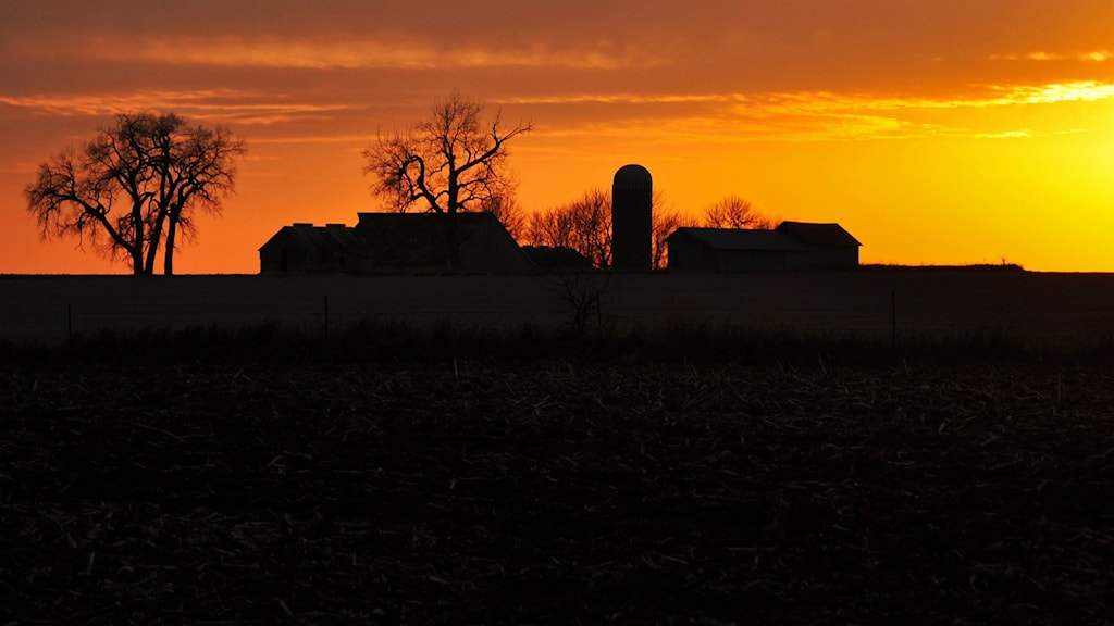 Bondgård i solnedgång.