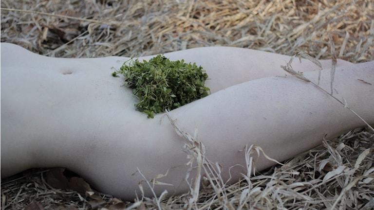 En naken person med växter på könet.